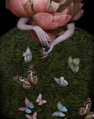Butterfly Hunter ©Daria Petrilli