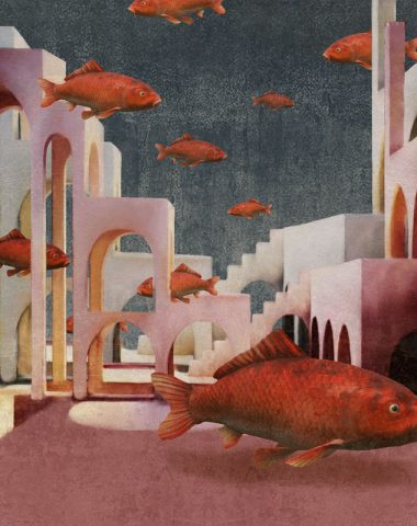 Red-fishes-New