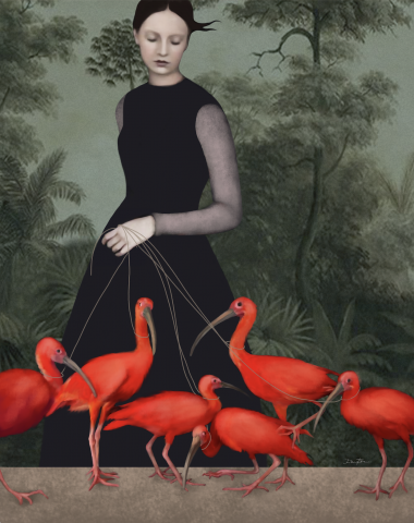 THE LADY OF THE IBIS